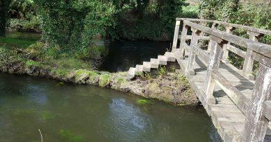 Aulas Verdes polo río Azúmara